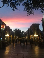Atardecer en La Ramblas #bcn #barcelona #laramblas #lasramblas #igersbcn #crepsculo #sunrise #sunset #sunshine #atardecer #anochecer (Carolina_BCN) Tags: barcelona sunset sunshine sunrise atardecer bcn lasramblas anochecer crepsculo laramblas igersbcn