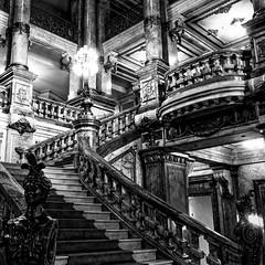 Theatro municipal do Rio de Janeiro (tetedelart1855) Tags: riodejaneiro opera noir bresil escalier noirblanc theatromunicipal