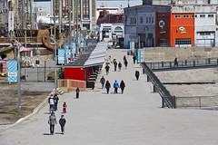 Le printemps s'installe! | Spring is finally here! (VieuxPortMontreal) Tags: montral quebec montreal qubec oldmontreal oldport vieuxport vieuxmontral vieuxportdemontral oldportofmontreal vieuxportmtl oldportmtl