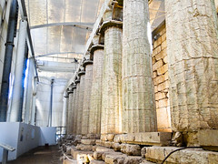 Pillars (StefoF) Tags: temple greece grecia apollo mythology ancientgreece tempio megalopolis mitologia bassae apolloepicurious anticagrecia tempiodiapolloepicurio