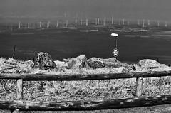 Blick vom Brocken (efgepe) Tags: bw blackwhite april sw brocken nik schwarzweiss harz 2016 gipfel dreisig silverefexpro