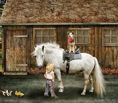 """My turn"" ! (rubyblossom.) Tags: horse dog girl cat buildings kitten chicks cowgirl bandanna stables 2016 rubyblossom miichallenge1 rubystreasures"