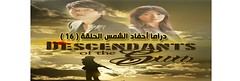 16 Descendants Of The Sun Episode (nicepedia) Tags: sun series 16 episode the   descendants of    descendantsofthesun 16 seriesdescendantsofthesun  descendantsofthesun  16descendantsofthesun 16 descendantsofthesun16 descendantsofthesunepisode16 descendantsofthesun16 episode16descendantsofthesun seriesdescendantsofthesunepisode16 16 16 16descendantsofthesun 16 16descendantsofthesun 16 16descendantsofthesun 16 16descendantsofthesun 16 descendantsofthesun16 descendantsofthesun16 16 16