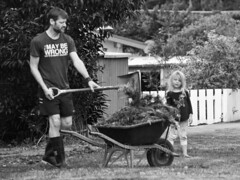 Helping Uncle Kevin 1 (ArdieBeaPhotography) Tags: blackandwhite bw man black tree monochrome grass leaves fence beard boots pavement tshirt shorts wheelbarrow wellingtons picket gumboots spade verge privet imaybewrong