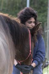 al ranch (maxis965) Tags: colore cavalli passione sguardi