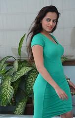 Bollywood Actress Meghna Patel Photos Set-4-HOT PHOTOS (11)