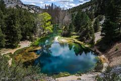 _DSC3011 (allabar8769) Tags: ro agua rboles paisaje montaa soria muriel vegetacin nwn calataazor lafuentona