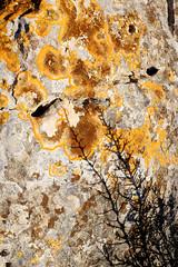 Texturas (canonixus1) Tags: textura stone 50mm14 sombras piedra calpe canon1740 canon6d canonixus1