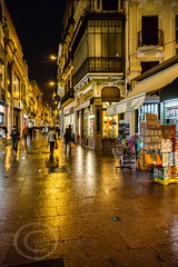 Seville Jan 2016 (12) 090 - Wet and dark in the city (Mark Schofield @ JB Schofield) Tags: santa plaza bridge parque people streets wet public caf rio architecture bar night umbrella reflections river dark ceramic puente graffiti la los spain guadalquivir san expo cathedral maria candid transport iglesia tram seville espana cruz tiles parasol universidad alcazar pavilion oranges harp andalusia cobbles encarnacion luisa giralda isla embankment metropol arenal justa triana macarena remedios cartuja alamillo bernado chapina