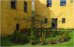 Culross Palace garden (Janbro) Tags: abstract architecture scotland colours culross bethbro