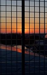 hiding (Benedict Flett) Tags: morning cambridge sun sunrise dawn