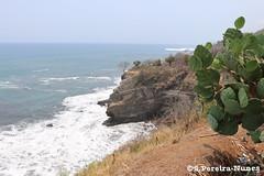 El Salvador's Coastline Cliffs (ssspnnn) Tags: elsalvador litoral pedras nunes acantilados litoranea penhascos spereira canoneos70d spereiranunes snunes
