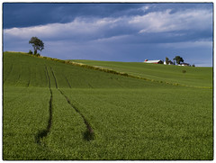 Farmland #6 (landskap Norge) (Krogen) Tags: norway landscape norge norwegen akershus romerike krogen landskap nannestad olympuse400