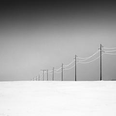 Wintery Fields (panfot_O (Bernd Walz)) Tags: winter blackandwhite bw snow monochrome field rural square landscape countryside frost fineart tranquility calm minimal silence fields poles minimalism snowscape