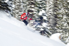 rippin' the lower flanks. (nevadoyerupaja) Tags: trees winter friends usa mountain snow cold creek forest nikon skiing freezing powder backcountry wyoming range backcountryskiing nikond7000