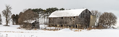 _DSC0920 (doug.metcalfe1) Tags: winter ontario barn landscape outdoor durhamcounty