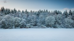 Deja Vu (Augmented Reality Images (Getty Contributor)) Tags: morning trees winter snow cold forest canon woodland bench landscape scotland perthshire progression dejavu