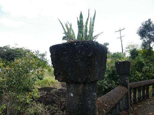 Flower Pot Rampart