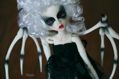 swan 01 (Hitsugi-Lou) Tags: doll dolls isabel bjd msd bjddoll dollchateau