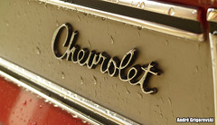 Chevrolet (grigorevski) Tags: chuva 1973 luxo ros detalhes opala