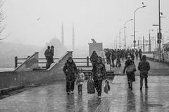 DSC_1650 (zeynepcos) Tags: bridge winter snow man cold fishing fisherman outdoor istanbul mosque galata karakoy eminonu