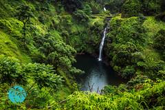 East Maui Waterfall (brandon.vincent) Tags: road hawaii waterfall rainforest stream maui east hana jungle lush kopililua