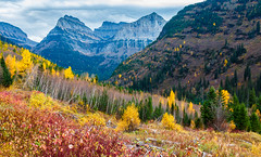 Autumn Colours (djryan78) Tags: travel autumn usa mountain mountains fall beautiful forest canon landscape nationalpark montana colorful unitedstates outdoor mountainside colourful glaciernationalpark dslr 18135 70d glaciercounty flatheadcounty canon70d 18135stm