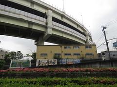 IMG_8759 (Momo1435) Tags: japan tokyo koto kotoku