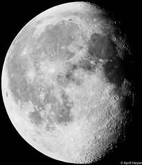 28jan16 lunar b (Wyld-Katt) Tags: moon lunar