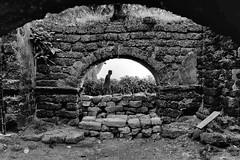 Walking by the ruins... (mehtasunil) Tags: leica old travel abandoned architecture ruins post decay chapel process leicacamera bambolim leicalens leicaq leicaforum leicaworld leicaimages grandhyattgoa year1613 leicaindia