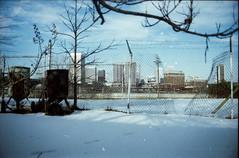 (Don't Sink) Tags: winter urban snow storm tree film skyline fence nikon richmond trespass fujifilm analogue blizzard fg 2016