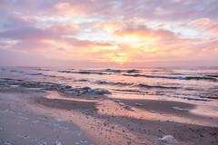 Sunrise (Infomastern) Tags: winter cold vinter frost rime rimfrost kallt skateholm