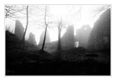 Whisper of Time: The Old Castle - alte Ruine (macplatti) Tags: castle austria ruine rheintal rhein stein burg renovierung aut mittelalter vorarlberg medivial koblach kummenberg fujixt10 neuburgbeigtzis fujifx1024mm