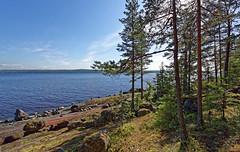 Pellotsaari 01 (mpetr1960) Tags: trees sky lake tree beach nature water rock clouds island coast nikon russia outdoor d810 pellotsaari