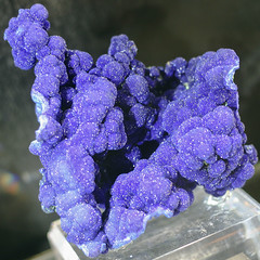 Druzy Azurite, Evan Jones Collection (cobalt123) Tags: arizona canon tucson firstphotos age11 2016 anavey tucsonrockandgemshow xti canonrebelxti anaveybolender
