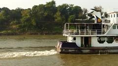20151222_084028-00004 (dudegeoff) Tags: asia december movies myanmar 2015 riverviews irrawaddyriver 20151222amdynyuboattobagan