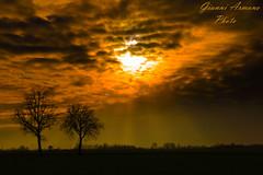 Il sole tramonta comunque (Gianni Armano) Tags: alberi photo san italia foto il campagna piemonte cielo sole inverno colori gianni alessandria giuliano nuovo 2016 tramonta comunque armano
