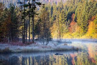 Un automne dans les Vosges