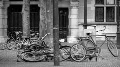 Inge Hoogendoorn (ingehoogendoorn) Tags: blackandwhite monochrome bike bicycle zwartwit thenetherlands streetphotography bikes denhaag monochromatic bicycles blacknwhite plein thehague fietsen streetview fiets bikeparking hetplein monochroom straatfotografie dutchbikes