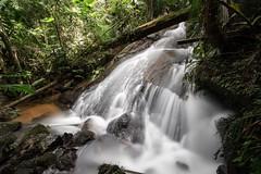 Tropical forrest (III) (Aperture Laboratory) Tags: brazil brasil long exposure forrest filter le jungle tropical cachoeira rainforrest brazili nd110