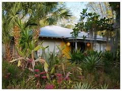Sarasota v.10 (Laurel Park) (John Lamont1) Tags: leica florida digilux2 sarasota gulfcoast residentialtypology certifiedwildliferefuge