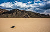 Nikon D810 Death Valley Fine Art Landscapes! Dr. Elliot McGucken Fine Art Landscape Photography! (45SURF Hero's Odyssey Mythology Landscapes & Godde) Tags: nature racetrack fineart wideangle rhyolite sanddunes fineartphotography naturephotography wideanglelens naturephotos mesquitedunes fineartphotos fineartphotographer fineartnature playaracetrack elliotmcgucken deathvalleyfineart elliotmcguckenphotography elliotmcguckenfineart masterfineartphotography nikond810deathvalleyfineartlandscapesdrelliotmcguckenfineartlandscapephotography