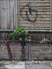 Touch (Alex Ellison) Tags: urban graffiti boobs touch graff throwup dds throwie