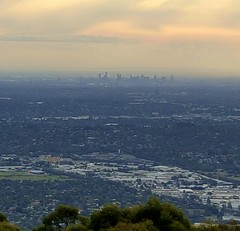 View of Melbourne city from Skyhigh Restaurant in Mount Dandenongs  A visit to the mountains with friends from Hong Kong. #Melbourne #australia #oz #downunder #mycity #horizon #skyline #dusk #visit #mountain #city (maypldigitalart) Tags: city mountain skyline dusk oz horizon australia melbourne visit downunder mycity