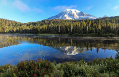 Rainier Reflected (Cole Chase Photography) Tags: summer mountain reflection sunrise canon volcano mountrainier mountrainiernationalpark pacificnorthwest reflectionlake t3i