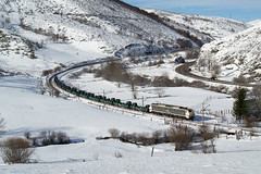 LE 251.015 | Busdongo (Fábio-Pires) Tags: españa electric train trenes spain espanha nieve neve locomotive pajares mitsubishi wagons comboio renfe ferrovia locomotiva 251 ffcc eléctrica vagões busdongo bobines mercancías bobinero 251015 terminalintermodal renfemercancías tracçãoeléctrica renfe251 bobineiro renfe251015 ffccleongijon