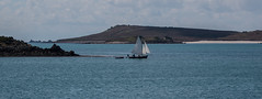 IMG_5950 - Copy (Chris Wood 1954) Tags: tresco islesofscilly