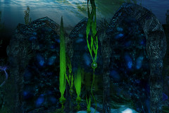 Helena Stringer - Fantasy Faire 2016 - Swim with Me - Pacifique - 3 (Helena Stringer) Tags: travel underwater sl secondlife fantasyfaire sltravel helenastringer fantasyfaire2016