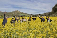 Salida de FeZ a Sos del Rey Catlico (kinojam) Tags: flores flower yellow canon kino flor amarillo fez camaras colza fotografos canon6d kinojam fotgrafosenzaragoza