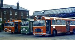 Slide 056-56 (Steve Guess) Tags: uk red england bus green bristol hampshire gb re lh provincial ecw rell hants hantsdorset